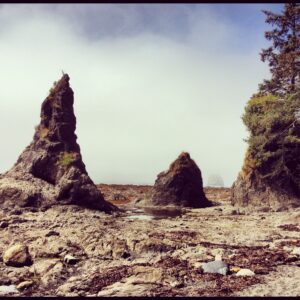 Beach Camping On The Olympic Peninsula Visit Seattle