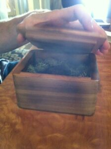 Cedar box with Sunflower Root