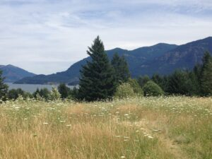 View from Skamania Lodge - photo by Danielle Decker