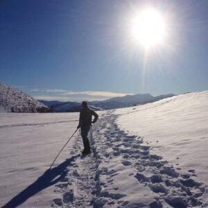 Snowshoe Break