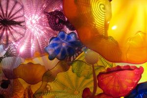 Photo2_Glass-Something strange in the garden