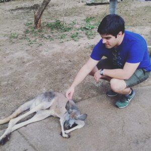 Nashville - Outdoor - Kangaroo