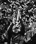 SSY2014_Superbowl-Win