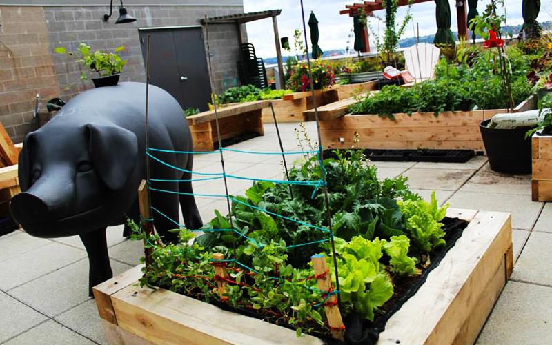 Photo: Pike Place Market Foundation