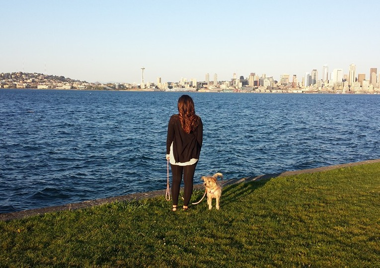 Dog Friendly Hotels Visit Seattle