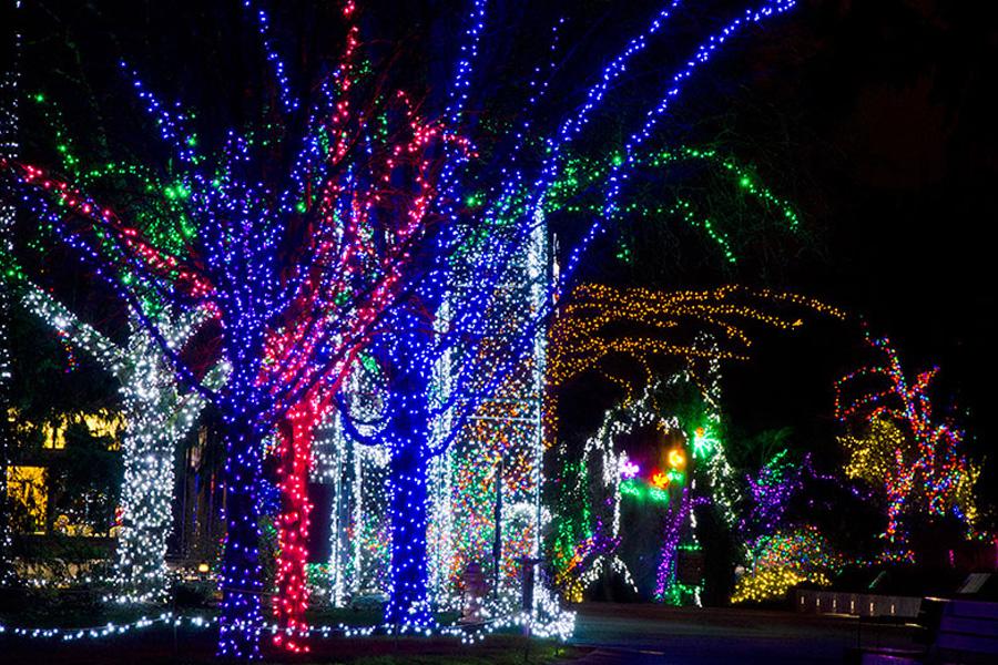 Photo: Woodland Park Zoo