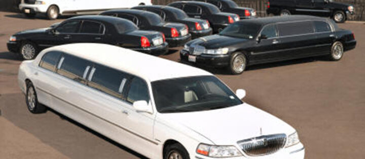 Bayview Limousine Services, Inc.