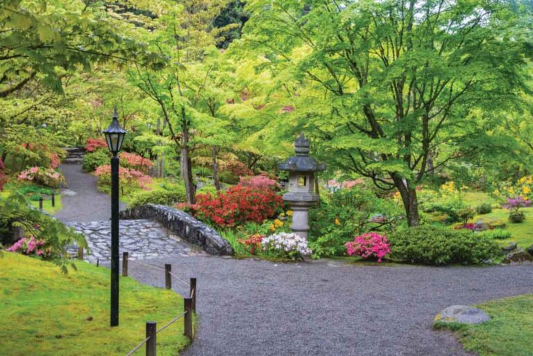 Seattle Japanese Garden Photo: Denise Lett/Alamy Stock Photo